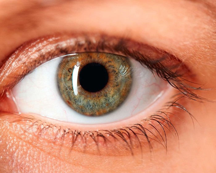 5 Facts Your Eye Doctor Wants You to Know