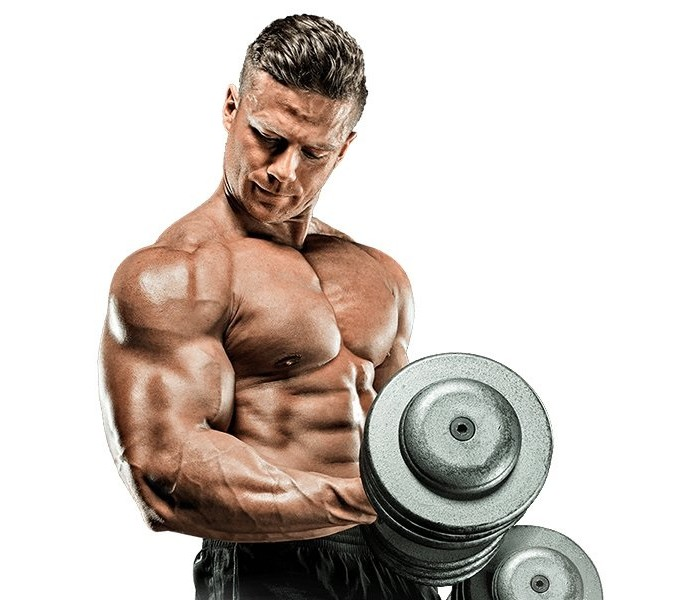A Short Introduction to Anabolic Steroids