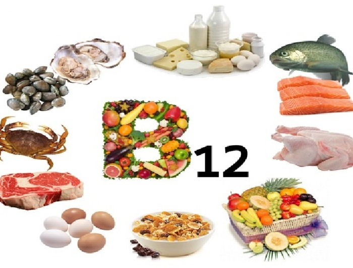How important is vitamin B12?